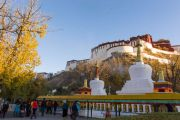 『圆梦西藏』拉萨+林芝+大峡谷+日喀则+纳木措+羊卓雍措_9日8晚跟团游